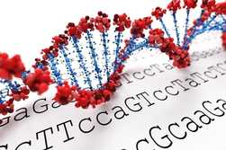 Next generation sequencing method in Cyprus for PGD