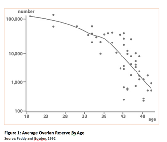 Average ovarian reserve of a woman by age