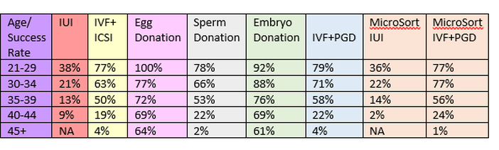 Egg donation success rates at North Cyprus IVF Clinic